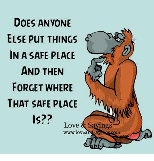Doe, Love, and Memes: DOES ANYONE  ELSE PuT THINGS  IN A SAFE PLACE  AND THEN  FORGET WHERE  THAT SAFE PLACE  Is??  Love & Sayings  www.lovea