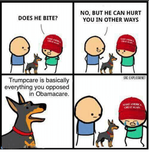 Memes, 🤖, and Bite: DOES HE BITE?  is basically  Trumpcare everything you opposed  in Obamacare.  NO, BUT HE CAN HURT  YOU IN OTHER WAYS  SRCEPLOSMNET