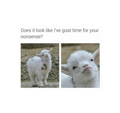 Goat, Time, and Nonsense: Does it look like I've goat time for your  nonsense?