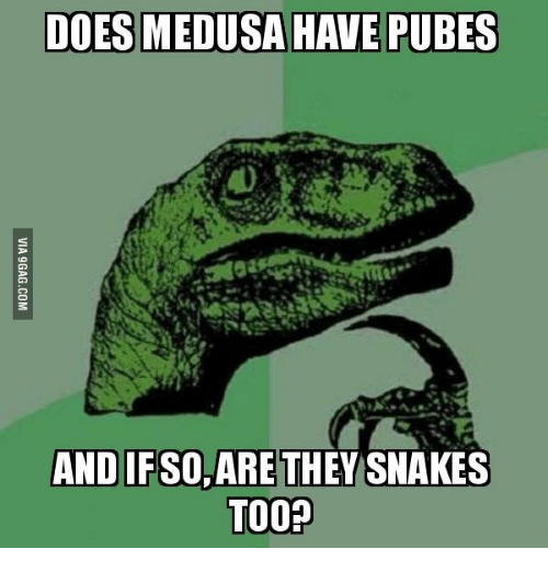 Medusa And Curtains Match Drapes: DOES MEDUSA HAVE PUBES AND IFSO, ARE THEY  SNAKES