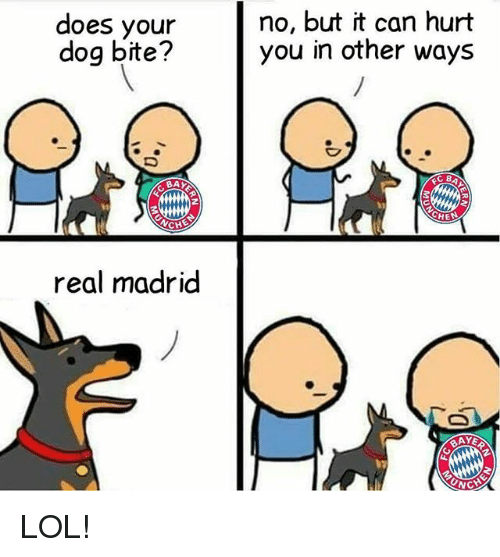 does your dog bite ch real madrid no but it 19135972 ✅ 25 best memes about does your dog bite does your dog bite memes,Does Your Dog Bite Meme