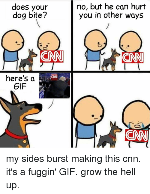 cnn.com, Gif, and Memes: does your  dog bite?  no, but he can hurt  you in other ways  here's a  GIF my sides burst making this  cnn. it's a fuggin' GIF. grow the hell up.