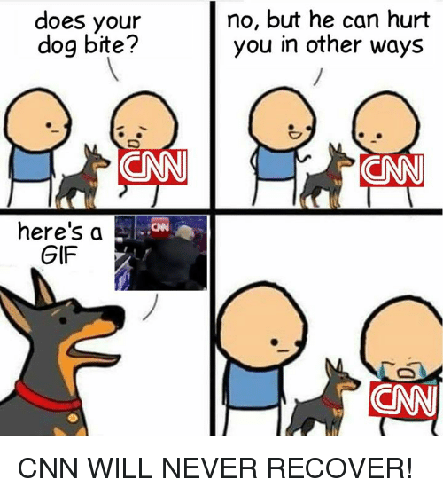 does your dog bite no but he can hurt you 24749728 does your dog bite? no but he can hurt you in other ways here's a,Does Your Dog Bite Meme