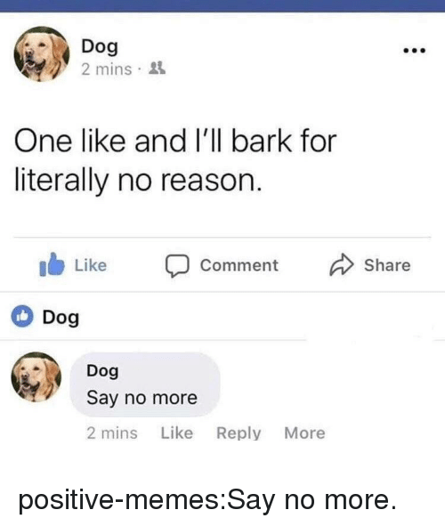 Memes, Target, and Tumblr: Dog  2 mins 3  One like and l'll bark for  literally no reason.  ib Like Comment Share  Dog  Dog  Say no more  2 mins Like Reply More positive-memes:Say no more.