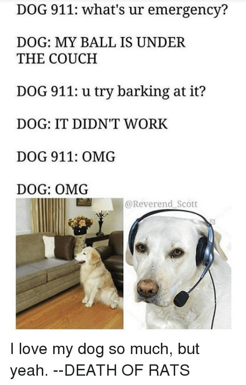 dog 911 whats ur emergency dog my ball is under 5626215 ✅ 25 best memes about love my dogs love my dogs memes