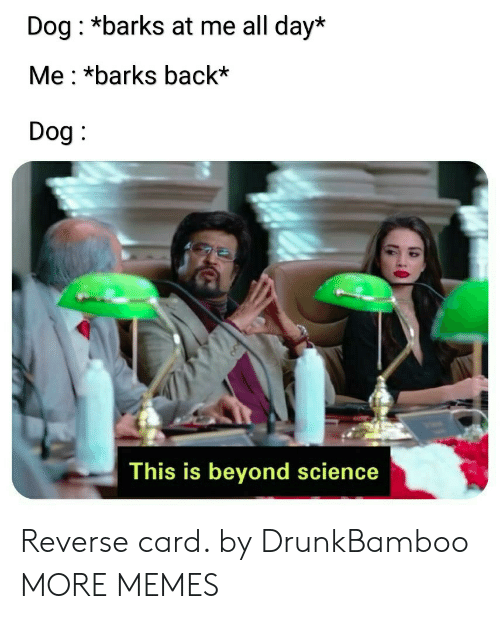 Dank, Memes, and Target: Dog: *barks at me all day*  Me : *barks back'  Dog  This is beyond science Reverse card. by DrunkBamboo MORE MEMES