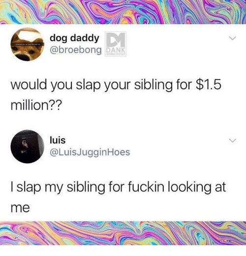 Humans of Tumblr, Dog, and Looking: dog daddy  @broebong DAN  would you slap your sibling for $1.5  million??  luis  @LuisJugginHoes  I slap my sibling for fuckin looking at  me