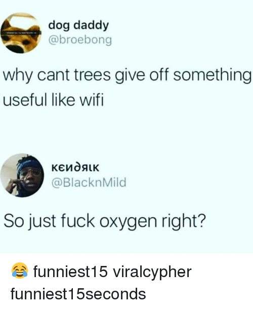 Funny, Fuck, and Oxygen: dog daddy  @broebong  why cant trees give off something  useful like wifi  @Blackn Mild  So just fuck oxygen right? 😂 funniest15 viralcypher funniest15seconds