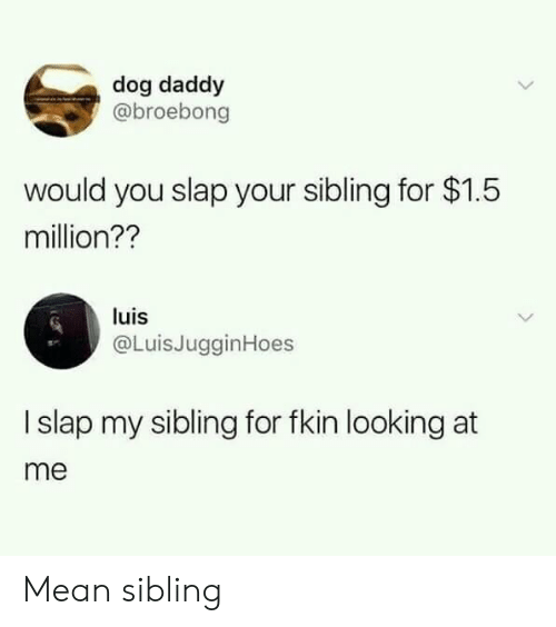 Mean, Dog, and Looking: dog daddy  @broebong  would you slap your sibling for $1.5  million??  luis  @LuisJugginHoes  I slap my sibling for fkin looking at  me Mean sibling