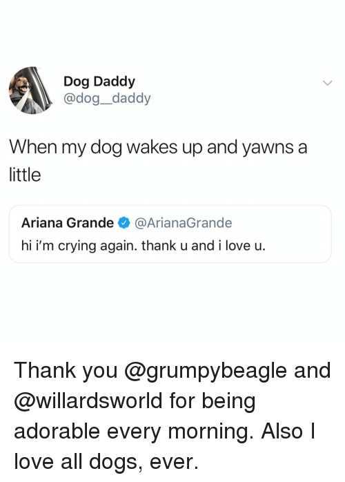 Ariana Grande, Crying, and Dogs: Dog Daddy  @dog_daddy  When my dog wakes up and yawns a  little  Ariana Grande @ArianaGrande  hi i'm crying again. thank u and i love u. Thank you @grumpybeagle and @willardsworld for being adorable every morning. Also I love all dogs, ever.
