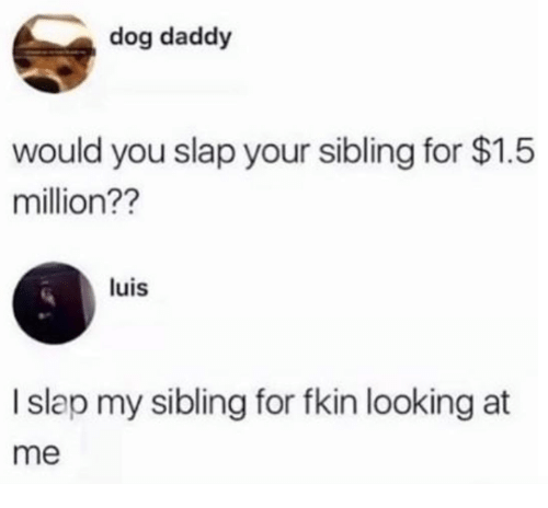 Dank, 🤖, and Dog: dog daddy  would you slap your sibling for $1.5  million??  luis  I slap my sibling for fkin looking at  me
