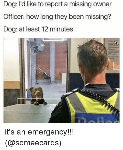 Memes, Someecards, and Been: Dog: I'd like to report a missing owner  Officer: how long they been missing?  Dog: at least 12 minutes it's an emergency!!! (@someecards)