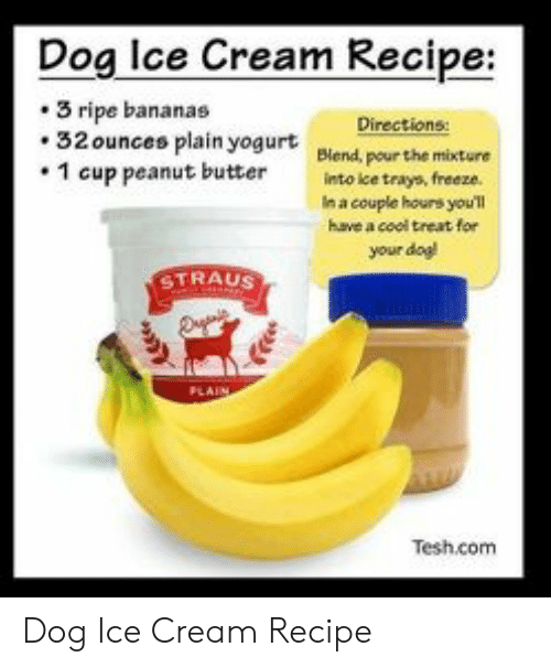 Cool, Ice Cream, and Dog: Dog lce Cream Recipe:  3 ripe bananas  Directions:  32 ounces plain yogurt Biend, pour the mixture  1 cup peanut butterinto ke trays, freeze.  n a couple hours youl  have a cool treat for  your dag  TRAUS  Tesh.com Dog Ice Cream Recipe