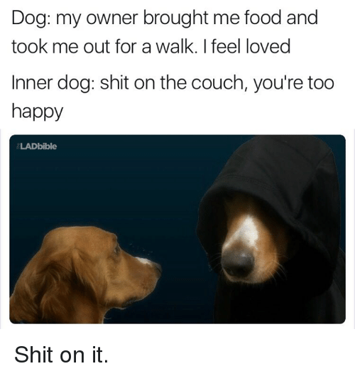 Dank, Couch, and 🤖: Dog: my owner brought me food and  took me out for a walk. I feel loved  nner dog: shit on the couch, you're too  happy  LADbible Shit on it.