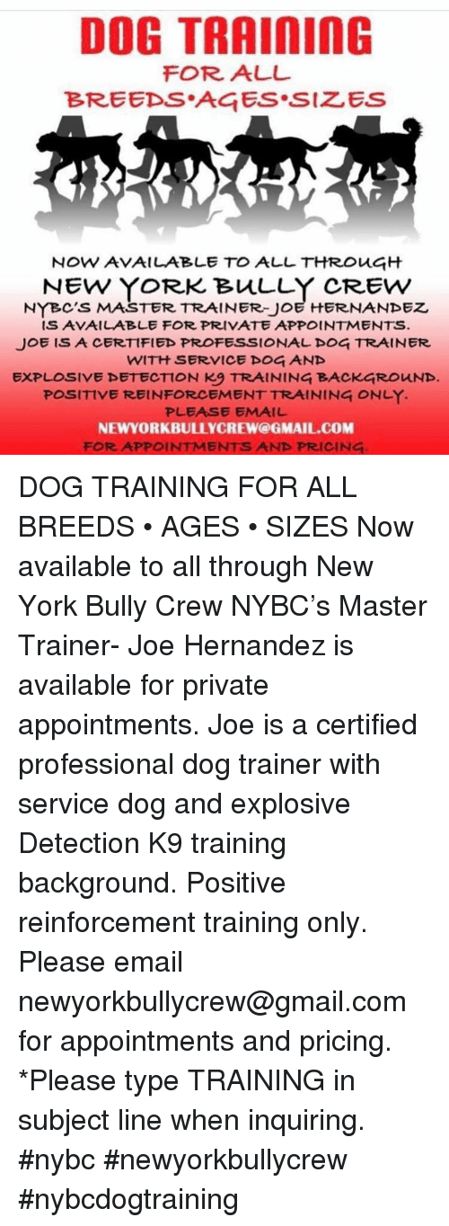 Memes, New York, and Email: DOG TRAInING  FOR ALL  BREEDS AGES SIZES  NOW AVAILABLE TO ALL THRoug  NEW YORK BuLLY CREW  NYBC'S MASTER TRAINER-JOE HERNANDEZ  IS AVAILABLE FOR PRIVATE APPOINTMENTS  JOE ISA CERTIFIED PROFESSIONALDOG TRAINER  WITH SERVICE DOG AND  EXPLOSIVE DETECTION K9 TRAINING BACKGROUND.  POSITIVE REINFORCEMENT TRAINING ONLY  PLEASE EMAIL  NEWYORKBULLYCREW@GMAIL.COM  FOR APPOINTMENTS AND PRICING DOG TRAINING FOR ALL BREEDS • AGES • SIZES Now available to all through New York Bully Crew NYBC's Master Trainer- Joe Hernandez is available for private appointments. Joe is a certified professional dog trainer  with service dog and  explosive Detection K9 training background. Positive reinforcement training only.  Please email  newyorkbullycrew@gmail.com for appointments and pricing.  *Please type TRAINING in subject line when inquiring.  #nybc #newyorkbullycrew #nybcdogtraining