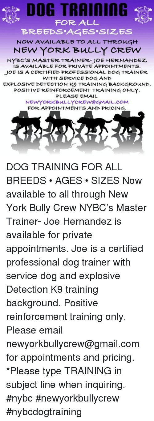 Dog Training For All Now Available To All Through Nybcs Master
