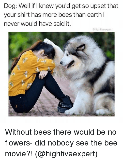 Bee Movie, Funny, and Earth: Dog: Well if I knew you'd get so upset that  your shirt has more bees than earth l  never would have said it.  @highfiveexpert Without bees there would be no flowers- did nobody see the bee movie?! (@highfiveexpert)