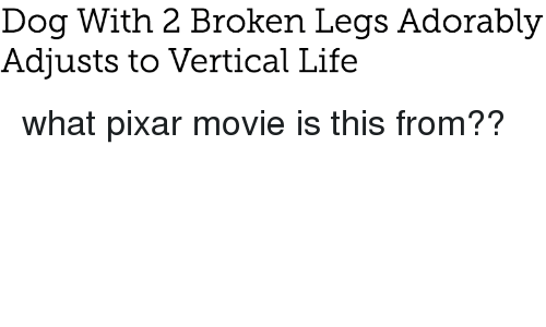 Life, Pixar, and Movie: Dog With 2 Broken Legs Adorably  Adjusts to Vertical Life <p>what pixar movie is this from??</p>