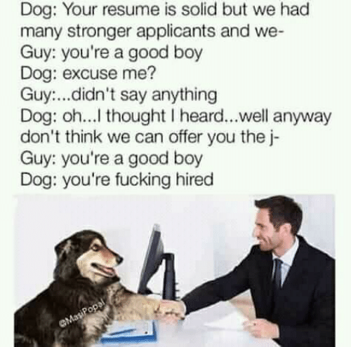 Fucking, Good, and Resume: Dog: Your resume is solid but we had  many stronger applicants and we-  Guy: you're a good boy  Dog: excuse me?  Guy:...didn't say anything  Dog: oh...l thought I heard...well anyway  don't think we can offer you the j-  Guy: you're a good boy  Dog: you're fucking hired