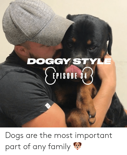 Dank, Doggy Style, and Dogs: DOGGY STYLE  CTIE  EPISODE 34 Dogs are the most important part of any family 🐶