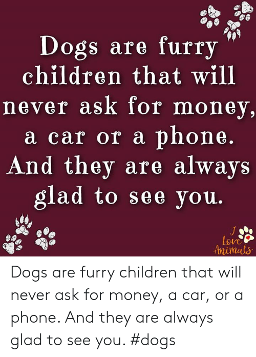 Dogs Are Furry Children That Will Never Ask for Money a Car