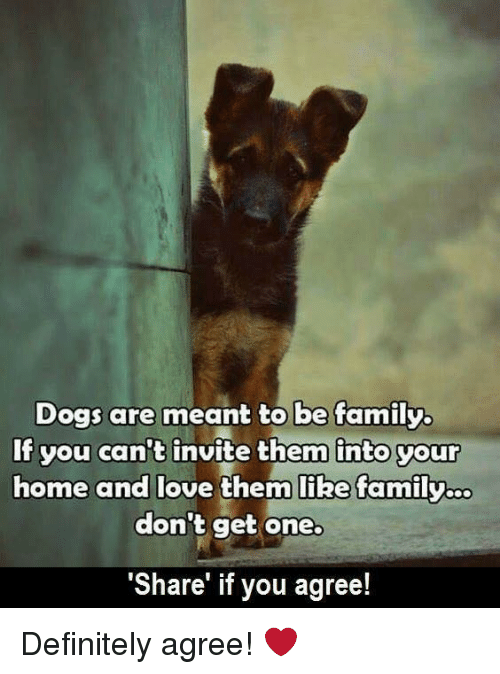 Dogs Are Meant To Be Family If You Can T Invite Them Into Your Home