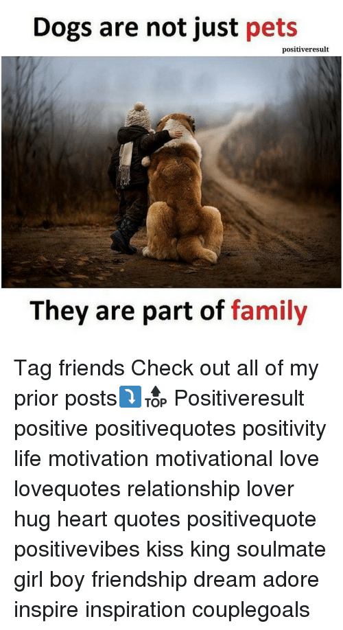 Dogs, Family, and Friends: Dogs are not just pets  positiveresult  They are part of  family Tag friends Check out all of my prior posts⤵🔝 Positiveresult positive positivequotes positivity life motivation motivational love lovequotes relationship lover hug heart quotes positivequote positivevibes kiss king soulmate girl boy friendship dream adore inspire inspiration couplegoals