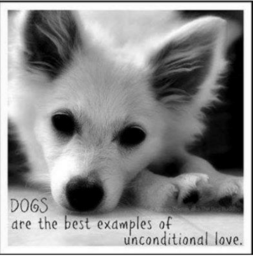 unconditional love examples