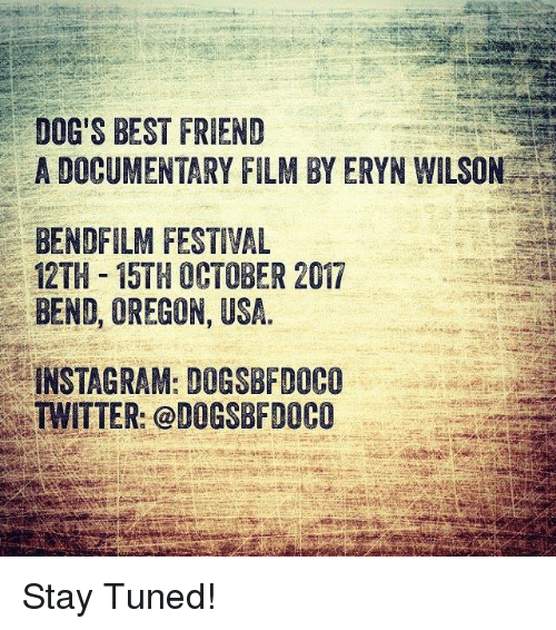 Best Friend, Dogs, And Instagram: DOGu0027S BEST FRIEND A DOCUMENTARY FILM BY  ERYN