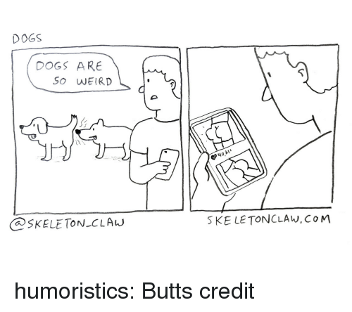 Dogs, Reddit, and Tumblr: DOGS  DOGS ARE  So WEIRD  40,  SKELE TON CLAw  SKE LE TONCLAW,CoM humoristics:  Butts credit