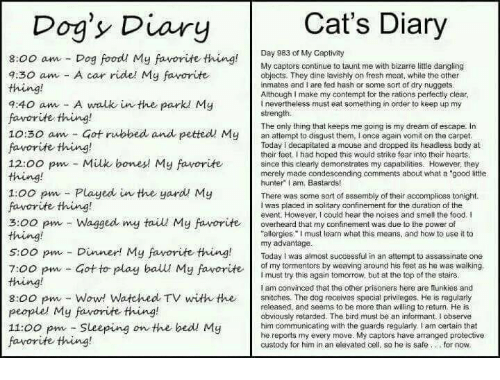 """Cats, Food, and Fresh: Dog'y Diary  Cat's Diary  Day 983 of My Captivity  8:00 am Dog foodu My favorite thing  9:30 am A car ridel My favorite  My captors continue to taunt me with bizarre little dangling  objects. They dine lavishly on fresh meat, while the other  inmates and I are fed hash or some sort of dry nuggets  Although I make my contempt for the rations perfectly clear,  I nevertheless must eat something in order to keep up my  strength.  q:40 am A walk in the park My  favorite thing!  10:30 am Got rubbed and petted! Myan attempt to disgust them, I once again vomit on the carpet  favorite thing!  The only thing that keeps me going is my dream of escape. in  Today I decapitated a mouse and dropped its headless body at  their feet I had hoped this would strike fear into their hearts  since this clearty demonstrates my capabilities. However, they  merely made condescending comments about what a """"good little  hunter I am, Bastards!  thing  1:00 pm Played in the yard My  favorite thing!  3:00 pm Wagged my tail My favorite overheard that my confinement was due to the power of  thing  s:00 pm Dinner! My favorite thing!Today l was almost successful in an attempt to assassinate one  There was some sort of assembly of their accomplices tonight.  I was placed in solitary confinement for the duration of the  event. However, I could hear the noises and smell the food. I  """"allergies. I must learn what this means, and how to use it to  my advantage.  7:oopm- Got to play ball My faverite y toentors hy weaving around his feet as he was walking  I must try this again tomorrow, but at the top of the stairs.  I am convinced that the other prisoners here are flunkies and  8:00 pw-Wow Watched TV witth the snitches. The dog receives special privileges. He is regulary  people. My fanorite thing!  11:00 pm Sleeping on the bedl My  favorite thing!  released, and seems to be more than willing to return. He is  obviously retarded. The bird must be an informant. I observe  him communi"""
