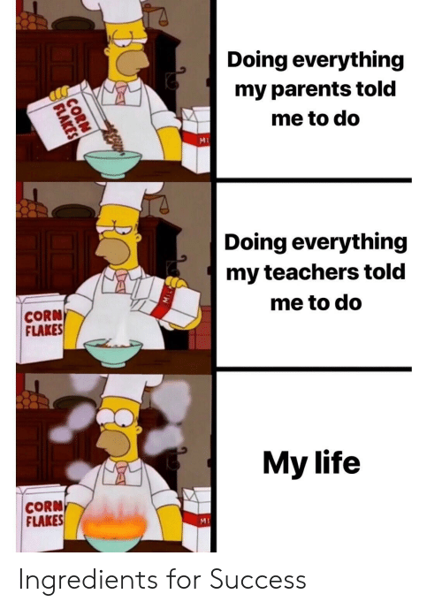 Life, Parents, and Success: Doing everything  my parents told  me to do  Ml  Doing everything  my teachers told  me to do  CORN  FLAKES  My life  CORN  FLAKES  MI Ingredients for Success