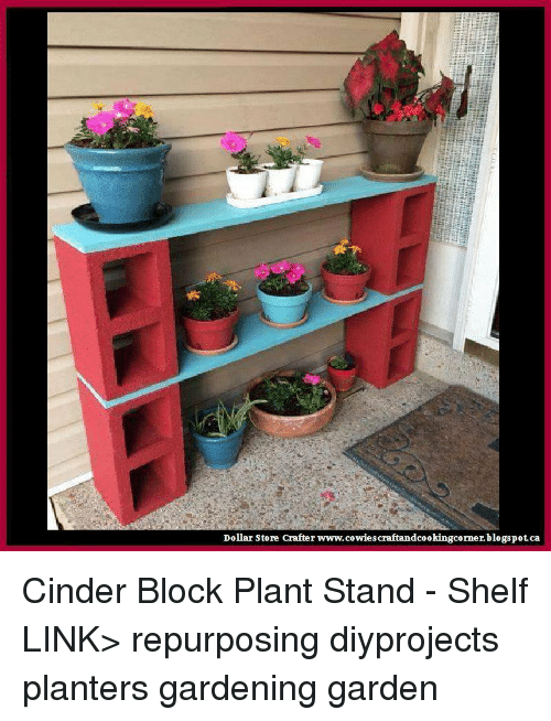 25 best memes about cinder block cinder block memes for Cinder block plant shelf