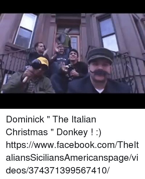 donkey memes and dominick the italian christmas donkey