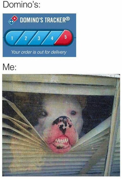 Memes, Domino's, and 🤖: Domino's  DOMINO'S TRACKER  1 2 4 5  Your order is out for delivery  Me: