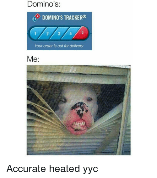 Memes, Domino's, and Dominoes: Domino's:  DOMINO'S TRACKER  Your order is out for delivery  Me Accurate heated yyc