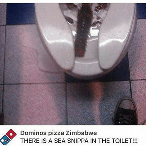 Dominos Pizza Zimbabwe IS a SEA THE TOILET!!! | Meme on ME ME