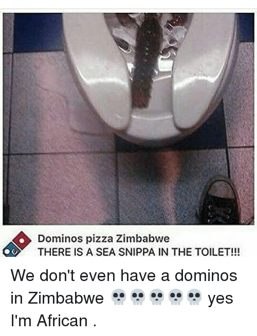 Memes, Pizza, and Domino's Pizza: Dominos pizza Zimbabwe  OO THERE IS A SEA SNIPPA IN THE TOILET!!! We don't even have a dominos in Zimbabwe 💀💀💀💀💀 yes I'm African .