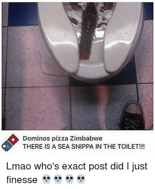 Lmao, Memes, and Pizza: Dominos pizza Zimbabwe  THERE IS A SEA SNIPPA IN THE TOILET!!! Lmao who's exact post did I just finesse 💀💀💀💀