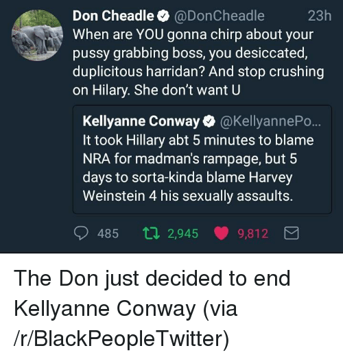 Blackpeopletwitter, Conway, and Pussy: Don Cheadle @DonCheadle  When are YOU gonna chirp about your  pussy grabbing boss, you desiccated,  duplicitous harridan? And stop crushing  on Hilary. She don't want U  23h  Kellyanne Conway @KellyannePo..  It took Hillary abt 5 minutes to blame  NRA for madman's rampage, but 5  days to sorta-kinda blame Harvey  Weinstein 4 his sexually assaults.  485 ti 2,945 9,812 <p>The Don just decided to end Kellyanne Conway (via /r/BlackPeopleTwitter)</p>