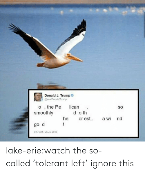 Tumblr, Blog, and Http: Donald J. Trump  @realDonald Trump  o, the Pe  smoothly  lican  SO  do th  cr est  he  a wi nd  !  go d  9:47 AM-25 Jul 2016 lake-erie:watch the so-called'tolerant left' ignore this