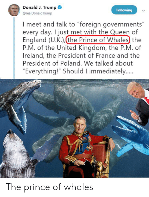 """England, Prince, and Reddit: Donald J. Trump  @realDonaldTrump  Following  I meet and talk to """"foreign governments""""  every day. I just met with the Queen of  England (U.K.)(the Prince of Whales) the  P.M. of the United Kingdom, the P.M. of  Ireland, the President of France and the  President of Poland. We talked about  """"Everything!"""" Should I immediately.. The prince of whales"""