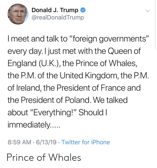 "England, Iphone, and Prince: Donald J. Trump  @realDonaldTrump  Imeet and talk to ""foreign governments""  every day. I just met with the Queen of  England (U.K.), the Prince of Whales,  the P.M. of the United Kingdom, the P.M.  of Ireland, the President of France and  the President of Poland. We talked  about ""Everything!"" Should I  immediately....  8:59 AM 6/13/19 Twitter for iPhone Prince of Whales"