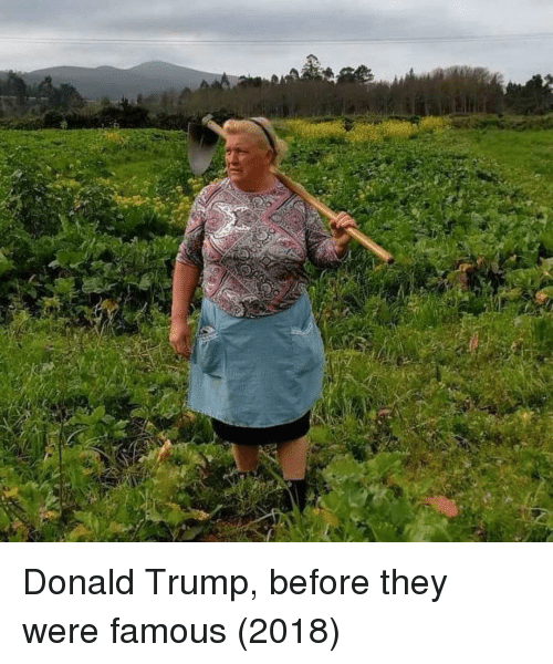 Donald Trump, Trump, and They: Donald Trump, before they were famous (2018)