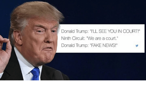 donald trump ill see you in court ninth circuit we 14286370 ✅ 25 best memes about trump fake news trump fake news memes,Fake News Memes