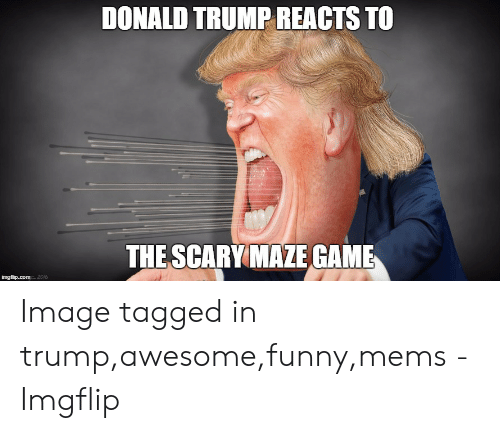 Donald Trump, Funny, and Game: DONALD TRUMP REACTS TO  THE SCARY MAZE GAME  2016 Image tagged in trump,awesome,funny,mems - Imgflip