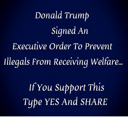 Donald Trump, Trump, and Tube: Donald Trump  Signed An  Executive Order To Prevent  Illegals From Receiving Welfare.  If You Support This  Tube YES And SHARE