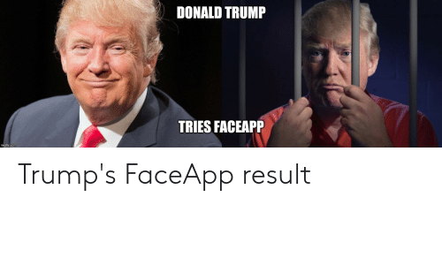 Donald Trump, Trump, and Com: DONALD TRUMP  TRIES FACEAPP  imgflip.com Trump's FaceApp result