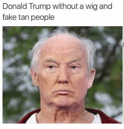 donald trump without a wig and fake tan people 31020917 donald trump without a wig and fake tan people donald trump meme