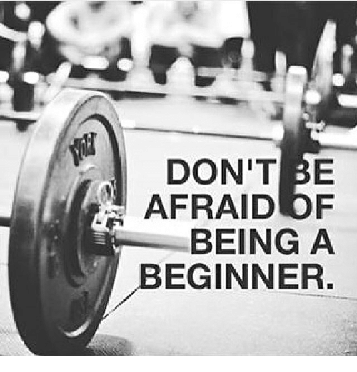 Image result for dont be afraid of being a beginner meme